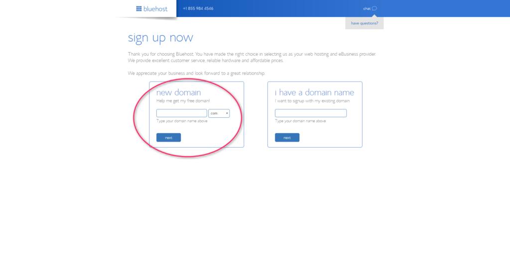 Wordpress Blog: Bluehost Domain Name